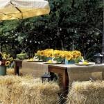 bales-hay-yellow-flowers-enter0706-de